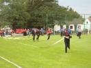 Falunap 2011_187