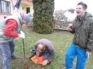 Karácsonyfa állítás és díszités 2011_13