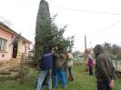 Karácsonyfa állítás és díszités 2011_17