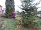 Karácsonyfa állítás és díszités 2011_19