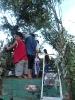 Szüreti felvonulás 2012_219