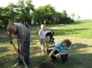 Ültessünk egy fát
